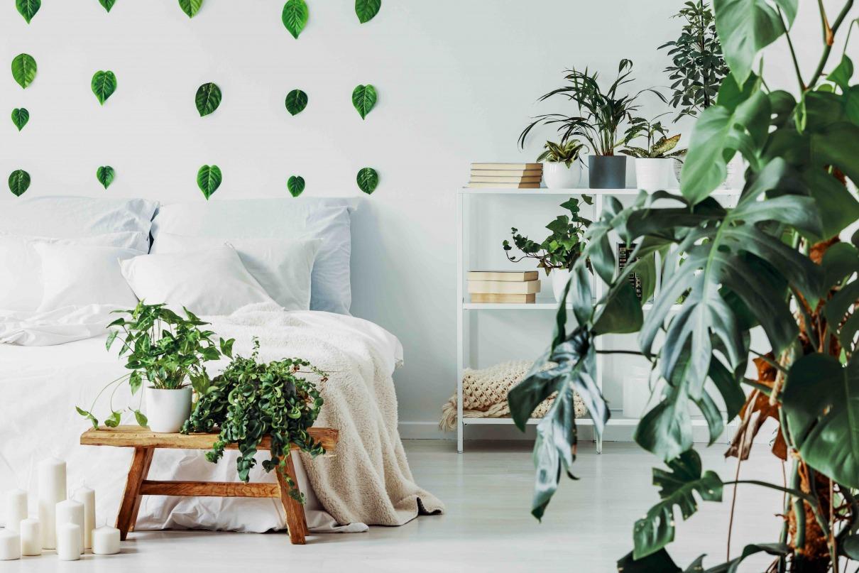 Urban Jungle Schlafzimmer Look